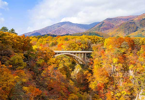 Crystal-Cruises-Autumn-Colours-Sendai-Miyagi-Japan